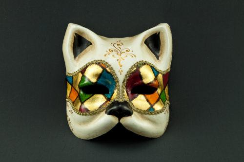 harlequin cat
